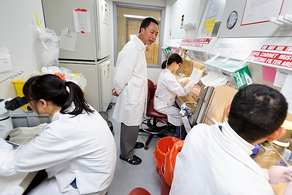 Zhang stem cell lab